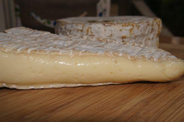 Brie og Camembert